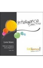 Intelligence collective : Livre blanc - Colligence - Intelligence collective | Développer l'intelligence collective des équipes | Scoop.it
