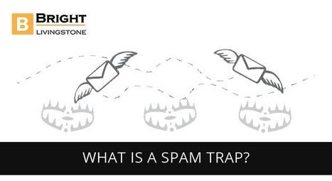 What is a spam trap? - BrightLivingstone.com   Brightlivingstone.com   Scoop.it