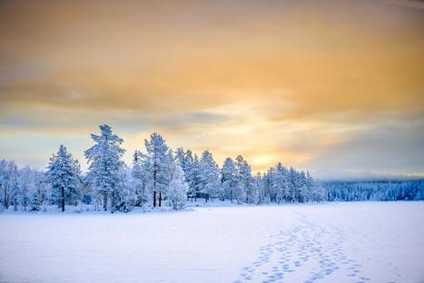 Winter Wonderland - Fujifilm X100T and TCL-X100 teleconversion lens | Fujifilm X Series APS C sensor camera | Scoop.it