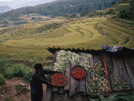 Bhutan Bets Organic Agriculture Is The Road To Happiness : NPR | Food & Agriculture | Scoop.it