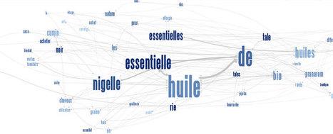 L'Audit sémantique : Méthodologie et outils | Veille SEO - Référencement web - Sémantique | Scoop.it