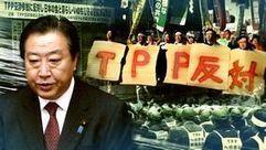 NHK WORLD TV   JAPAN 7 DAYS   Japanese politics glip   Scoop.it