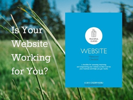 Is Your Website Working for You? A Practical Guide for Assessing, Improving and Empowering Your Website | Facebook ..for fun, for buisness | Scoop.it