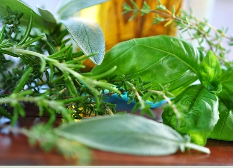 Huiles essentielles : cuisine créative ! - lavenir.net | Le BCC! InfoConso - l'information utile pour consommateurs avertis ! | Scoop.it