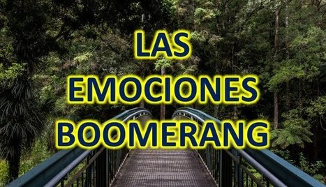 #RRHH Las emociones boomerang por @dacarbpl   #HR #RRHH Making love and making personal #branding #leadership   Scoop.it