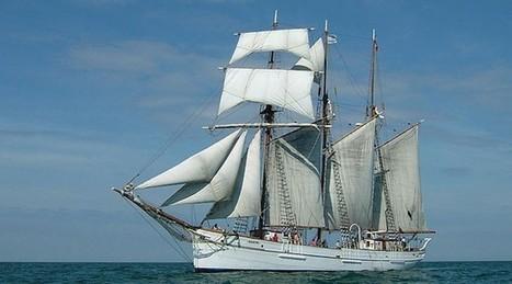 Ecole Jean-Loup Chrétien, Fauville-en-Caux » L'Armada de Rouen par Emma C. | Les news en normandie avec Cotentin-webradio | Scoop.it