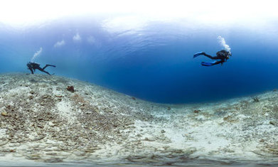 Caribbean has lost 80% of its coral reef cover in recent years | Sustain Our Earth | Scoop.it
