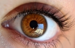 Startup focuses on biomimicry lenses as presbyopia treatment   Sustainable Futures   Scoop.it