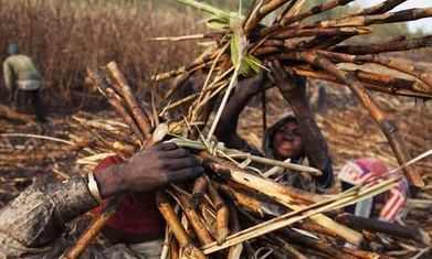 Oxfam reveals global food firms' gaping ethical shortfalls   A Better Food System   Scoop.it