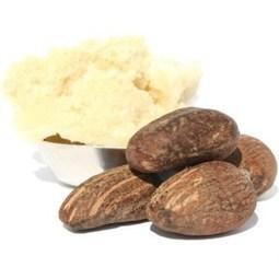 Découvrez les prodigieuses vertus cachées du beurre de karité - Camer24 | Actualite Et infos Cameroun | Scoop.it