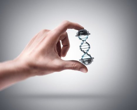 The DNA Of Leadership: 3 Key People Every Successful Company Must Have | Leadership | Scoop.it