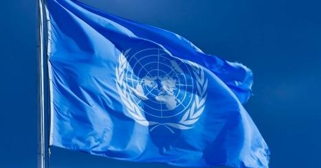 Will Saudi Arabia Stop UN From Investigating Its War Atrocities in Yemen?   Global politics   Scoop.it