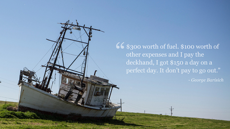 Empty nets in Louisiana three years after the spill | All about water, the oceans, environmental issues | Scoop.it