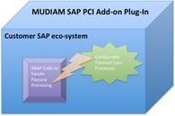 MUDIAM INC Blog: MUDIAM SAP® PCI Add-on Plug-In in action | ach file and ach debit service | Scoop.it