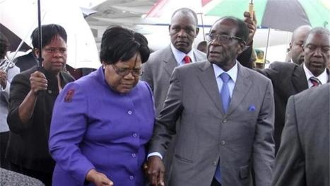 Purging Mugabe challengers in Zimbabwe | NGOs in Human Rights, Peace and Development | Scoop.it