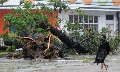 Typhoon Haiyan and climate change Q&A | AS G1 Tectonics, Rivers and Climate Change | Scoop.it