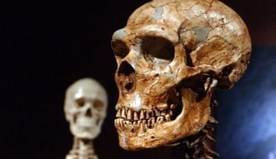 Neanderthals could speak, archaeologists say - Archaeology | linguistic anthropology | Scoop.it