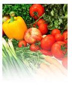 Huiles essentielles et jardinage - Huiles & Sens Aromathérapie | pour mon jardin | Scoop.it