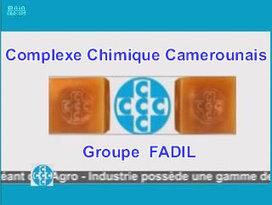 Immigration: 69 Camerounais chassés de la Guinée équatoriale | Oyem Hebdo | Scoop.it