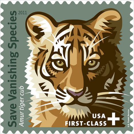 Celebrating Tigers, Stamping Out Extinction | IIP Digital | Dear World, wake up! | Scoop.it