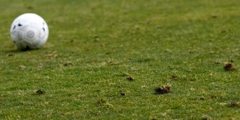 Sodexo investit le terrain du sport et des loisirs | Recrutement et RH | Scoop.it