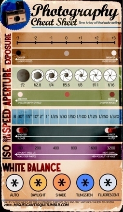 Algunos ajustes de fotografía #infografia #infographic #design | TICs ... | Conoce Mexico | Scoop.it