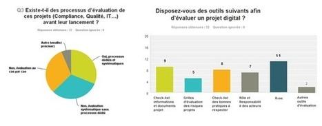 Quelle gouvernance des projets digitaux pour les industriels de santé ? - Club Digital Santé | TIC&Santé | Scoop.it