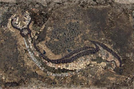 Archeologia, il più grande mosaico della Magna Grecia è in Calabria. Scoperto dopo 15 anni di scavi (FOTO) | LVDVS CHIRONIS 3.0 | Scoop.it