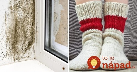 Nadmerná vlhkosť v byte môže byť nebezpečná. Jednoduchý trik, ako ju znížiť!   domov.kormidlo.sk   Scoop.it