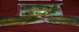 Bandeng Presto adalah Kuliner Khas Semarang | Bandeng Presto Favorite | Scoop.it