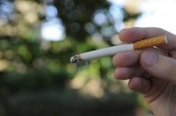 USCB to Go Tobacco-Free in 2015 | I love cigarettes | Scoop.it
