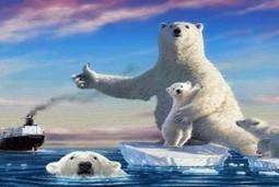 Ártico: un mundo que se deshace (VIDEO)   Canal Azul 24   Agua   Scoop.it