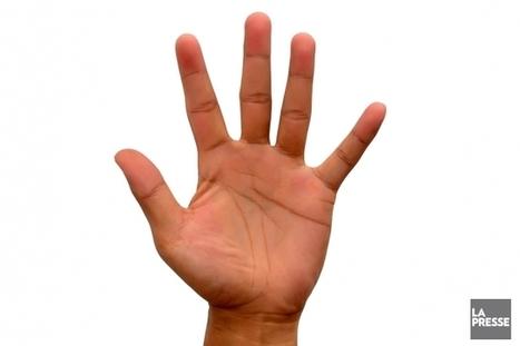 Pourquoi a-t-on cinq doigts? | Archivance - Miscellanées | Scoop.it