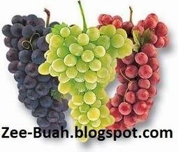 Manfaat Buah Anggur untuk Kesehatan Tubuh   Situs Buahan   Situs Buahan   Scoop.it