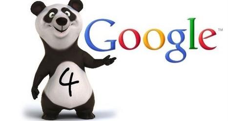 Google Panda 4.0 Güncellemesi   BayWebMaster   Scoop.it
