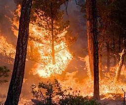 Climate Models Project Increase in U.S. Wildfire Risk | Sustain Our Earth | Scoop.it