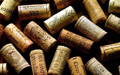 Global wine shortage on the horizon, economists warn - Telegraph   IB Section 1 Micro   Scoop.it