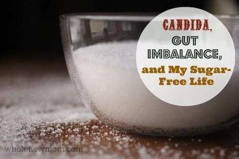 What is Candida? | The Beginning of My Sugar-Free Life - Whole New Mom | Cómo convertirte en la mejor versión de tí mismo. | Scoop.it