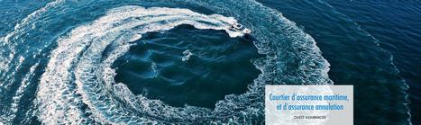 Assurance : Dénicher l'offre avantageuse avec un comparateur en ligne   l-assurance   Scoop.it