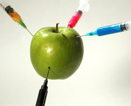 California rechaza Propuesta 37 de etiquetado a OGM   Gestión y competencias profesionales   Scoop.it
