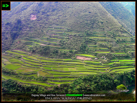 EDMARATION #TownExplorer: Bugnay Rice Terraces and that Lucky Village in Kalinga   #TownExplorer   Exploring Philippine Towns   Scoop.it