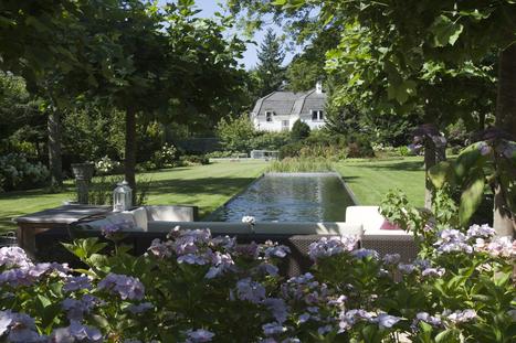 Piscines naturelles - Tendance n°1 - Le Living-Pool invisible | BIOTOP - Baignades & piscines  ecologiques - Jardin | Scoop.it