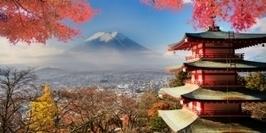 [Focus] L'e-commerce au Japon à la loupe   Ecommerce' topic   Scoop.it
