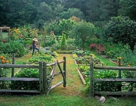 Пермакултура - врт у складу с природом! | Гајење биља на природан начин | Scoop.it