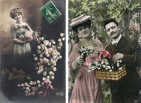 Le muguet, l'églantine, le chrysanthème, le coquelicot et l'oeillet - Arrêt sur images | FLE en ligne | Scoop.it