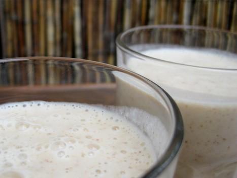 Vegan Milkshake | Coconut Smoothie Recipe | Healthy Blender Recipes | Bouger, manger pour votre santė | Scoop.it