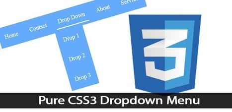 Pure CSS3 Dropdown Menu - Andor Nagy | Web Design | Scoop.it