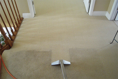 How to maintain Carpet at its original best - London Carpet Cleaning   Sooper Clean   Scoop.it