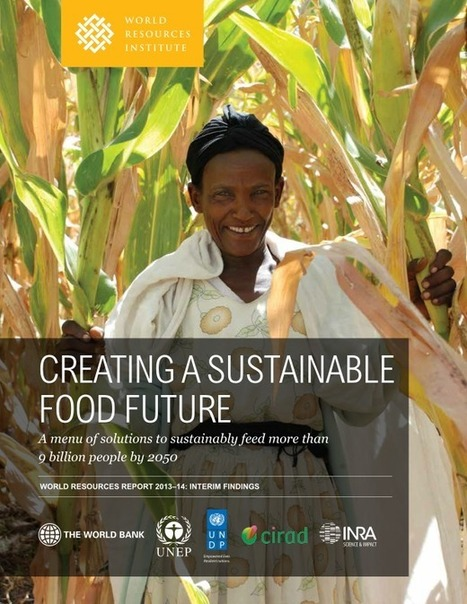 Creating a Sustainable Food Future: A menu of solutions to sustainably feed more than 9 billion people by 2050 | Agricultural Biodiversity | Scoop.it