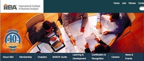 PMI®: Un nuovo standard per la Business Analysis? | Strumenti per i project management | Scoop.it
